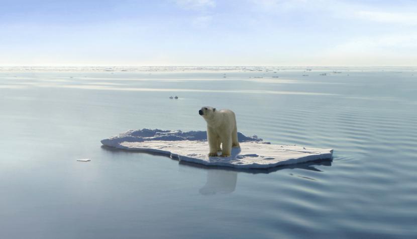 El calentamiento global y el equívoco de las prioridades (parte 1)